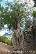 Photos Cambodge Angkor - Ta Som -