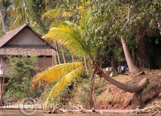 Ban Khon Laos  city pictures gallery : Laos Don Khon Ban Khon, principal village de Don Khon