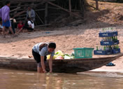 Photos Laos - Don Khon -