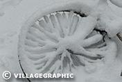 Photos Provence - Marseille sous la neige