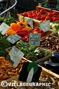 Photos Provence - Légumes de Provence