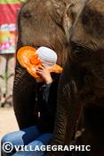 Photos Thailande - Surin en Thaïlande