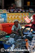 Photos Thailande - Marchande de poisson sur le marché d'Ayutthaya